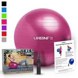 Exercise Ball (55 CM) for Stability & Yoga - Workout Guide Incuded - Professional Quality (Pink) -